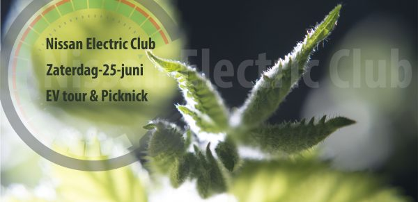 EV tour & Picknick uitje van de Nissan Electric Club zaterdag 25 juni